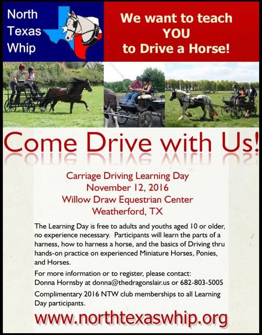 carriage lessons